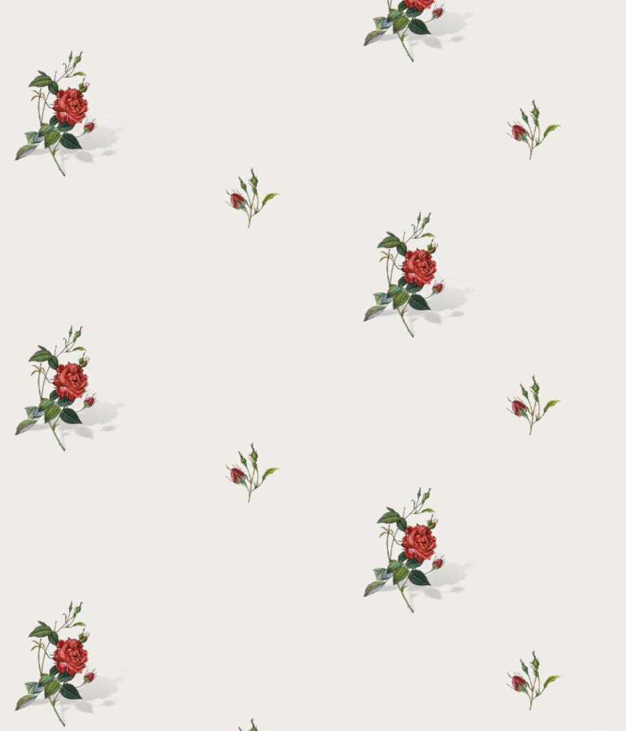 8005 Τριαντάφυλλο