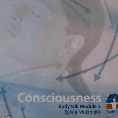 Consciousness Lecture (mp3)