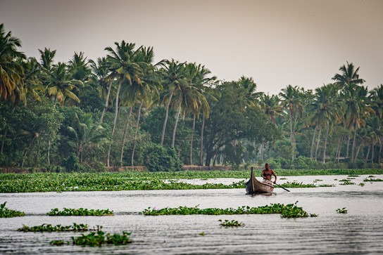 Fisherman back to home