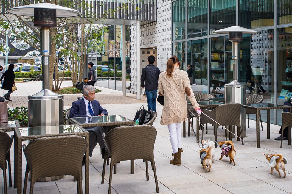 Doggie Style -Japan