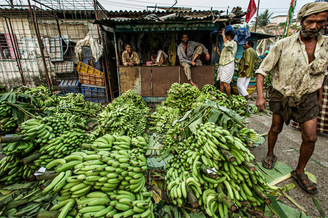 Tropical morning market