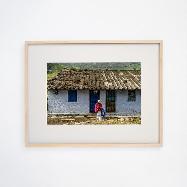 The old man sitting in the sun, Munnar Kerala INDIA