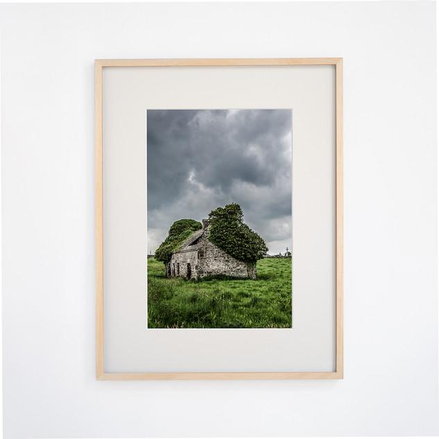 Tree House on Kildare, IRELAND