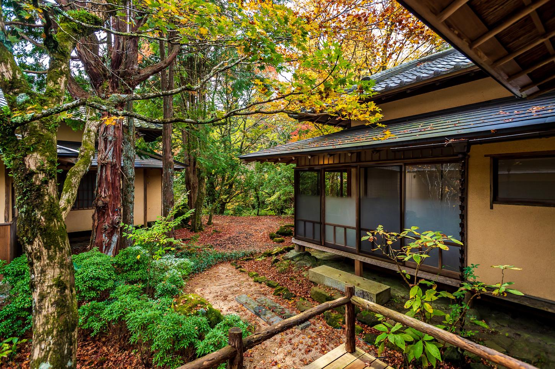 WOODLAND RETREAT / Nest inn, Hakone Japan