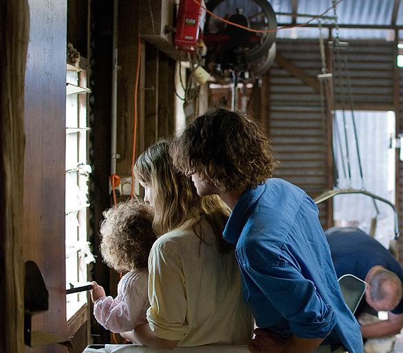Millpost Merino Yarn - Shearing