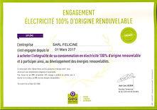 Diplome_Electricité_verte_Féliciné.jp