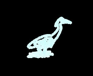 Grey Heron 1.png