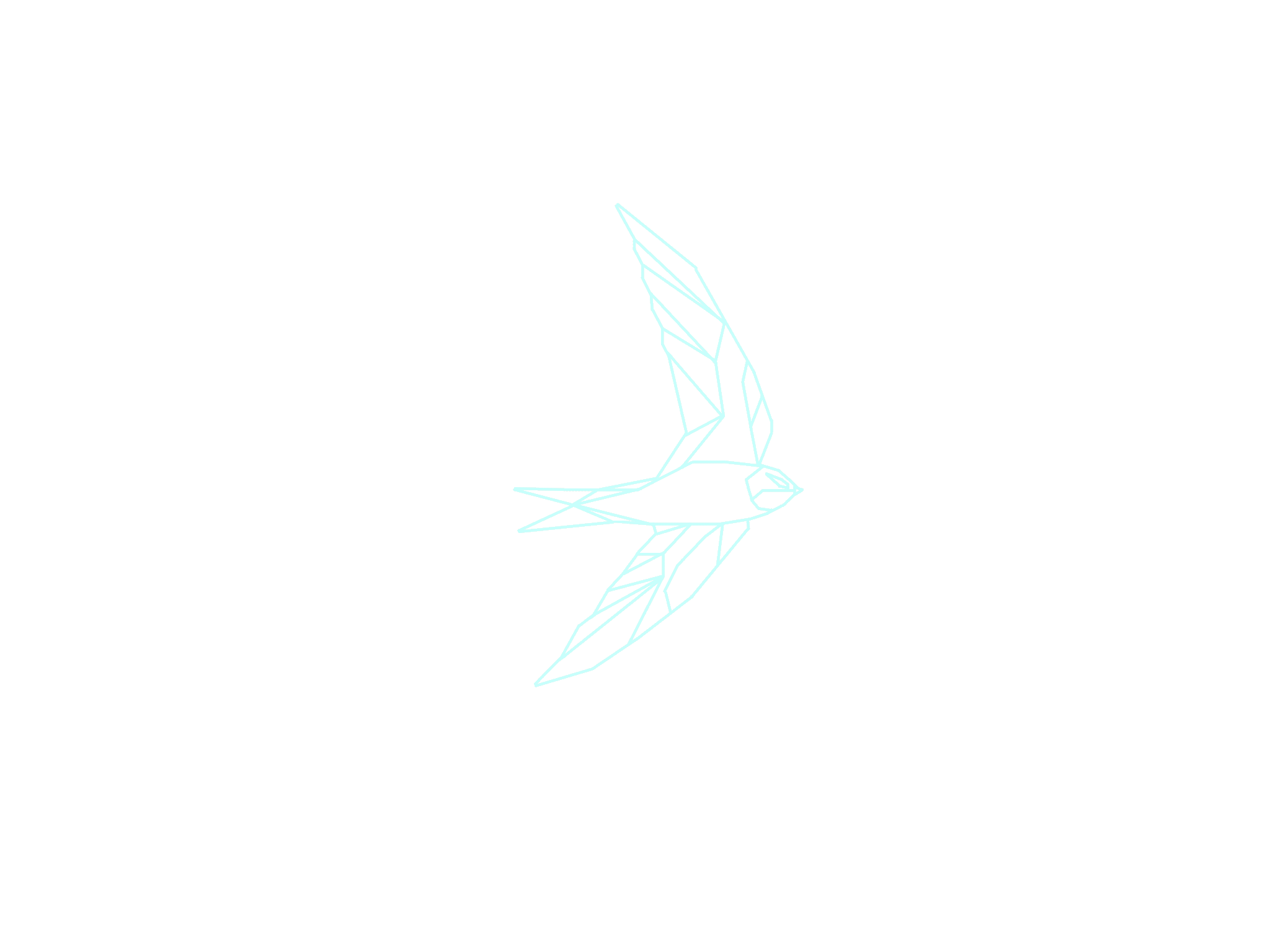 Swift_edited