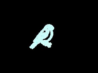 Bullfinch.png
