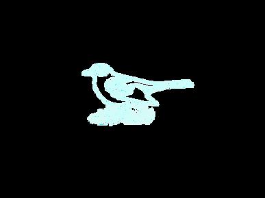 Blackbird_edited.png
