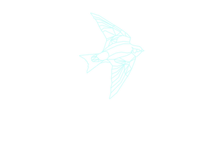 House Martin.png