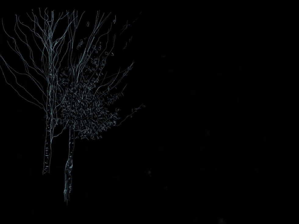 Paper.Trees.20.jpeg