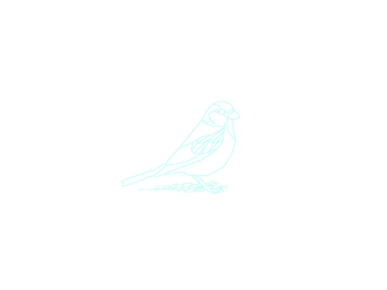 House Sparrow.png