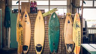 [衝浪] 如何選擇適合自己的衝浪板?
