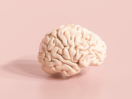 Fonctionnement cérébral et acides gras