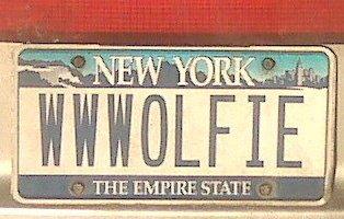 Jim Wolfie McGraph Solo