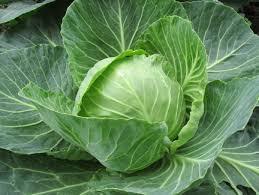 Cabbage (per lb)