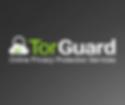 torguard-300x250.png