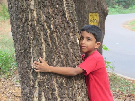 1200px-Child_hugging_tree_at_Peravoor_(5