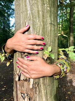 tree-4925700_960_720.jpg