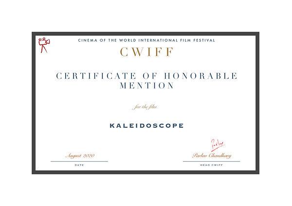 1.24 Honorable Mention Kaleidoscope.jpg