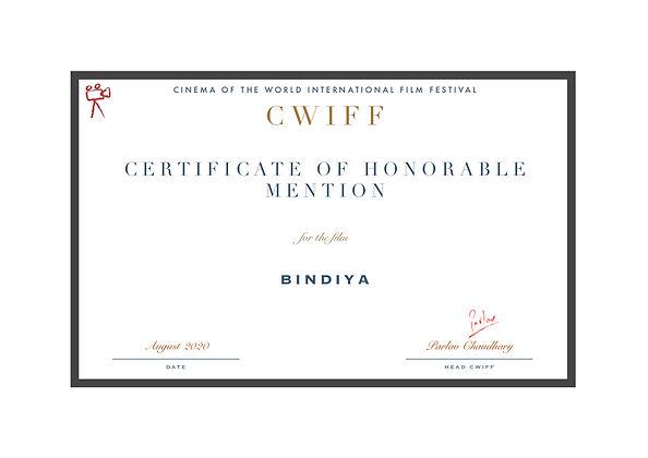 1.9 Honorable Mention Bindiya.jpg