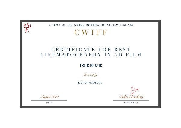 1.3 Best Cinematography (Ad Film) Igenue