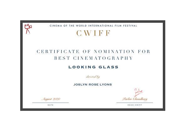 1.6 Nominee - Best Cinematography - Look