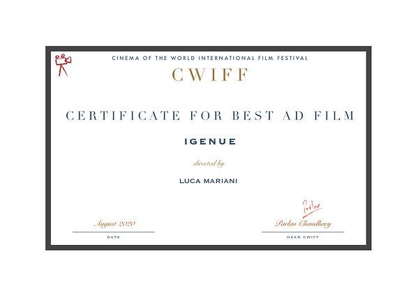 1.5 Best Ad Film - Igenue.jpg