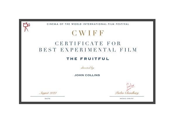 1.8 Best Experimental Film.jpg