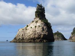 Champagne Bay Whitianga