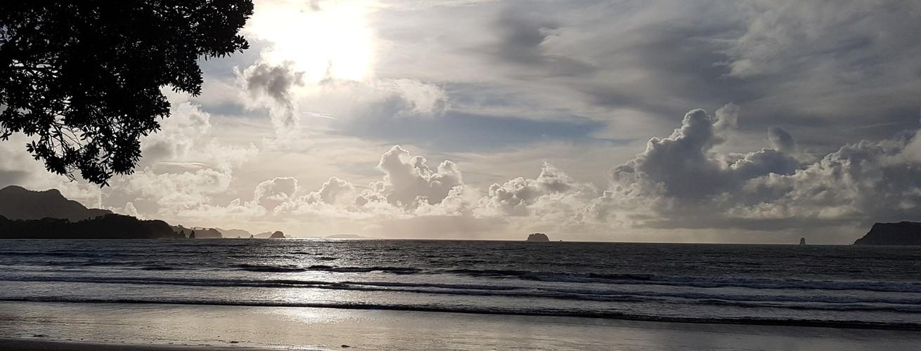 Mercury Bay Whitianga