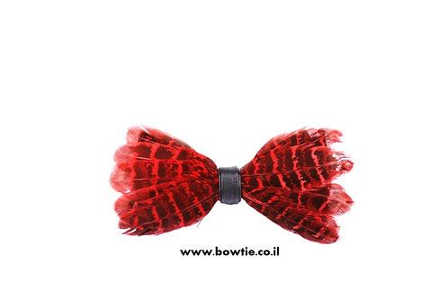 עניבת פפיון נוצות אדומה