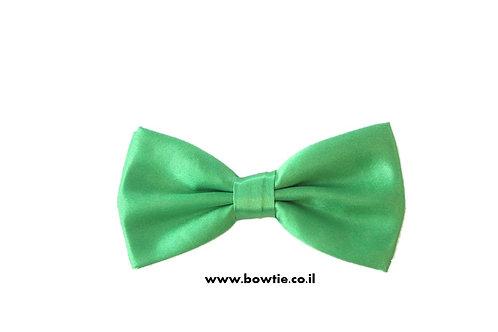 עניבת פפיון ירוקה
