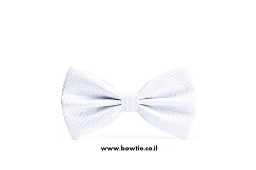 עניבת פפיון לבנה