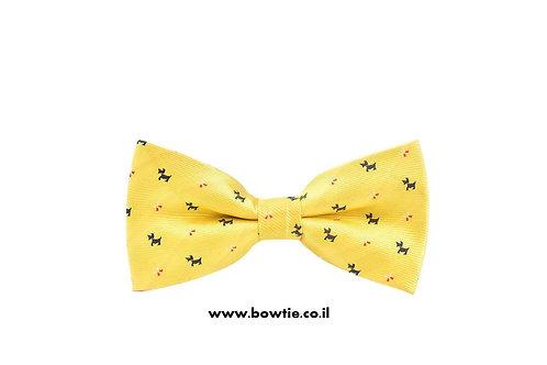 עניבת פפיון צהובה כלבים