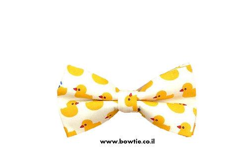 עניבת פפיון ברווזים