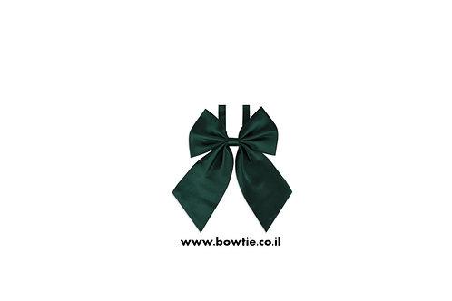 עניבת פפיון פרפר ירוקה