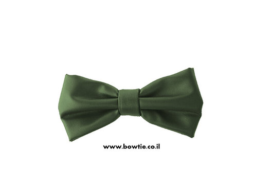 עניבת פפיון דמוי עור ירוקה