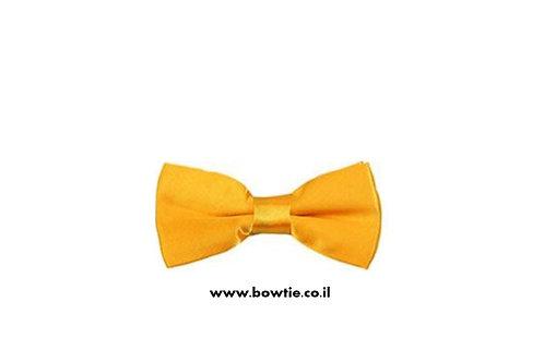 עניבת פפיון צהובה