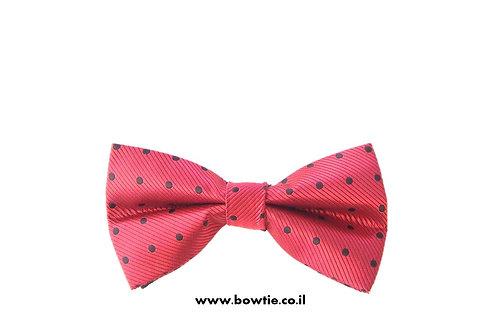 עניבת פפיון אדומה נקודות שחורות