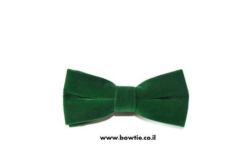 עניבת פפיון קטיפה ירוקה