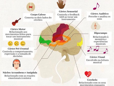 Neurologista e músico afirma: 'A música muda o cérebro'