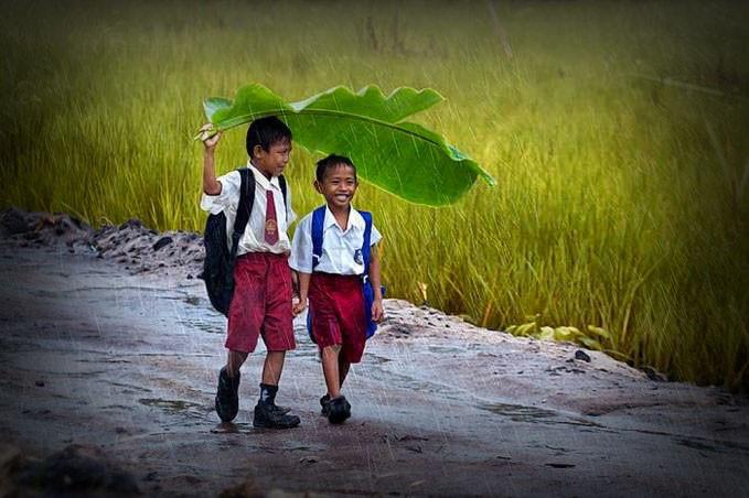 Irmãos se protegem com folhas da chuva