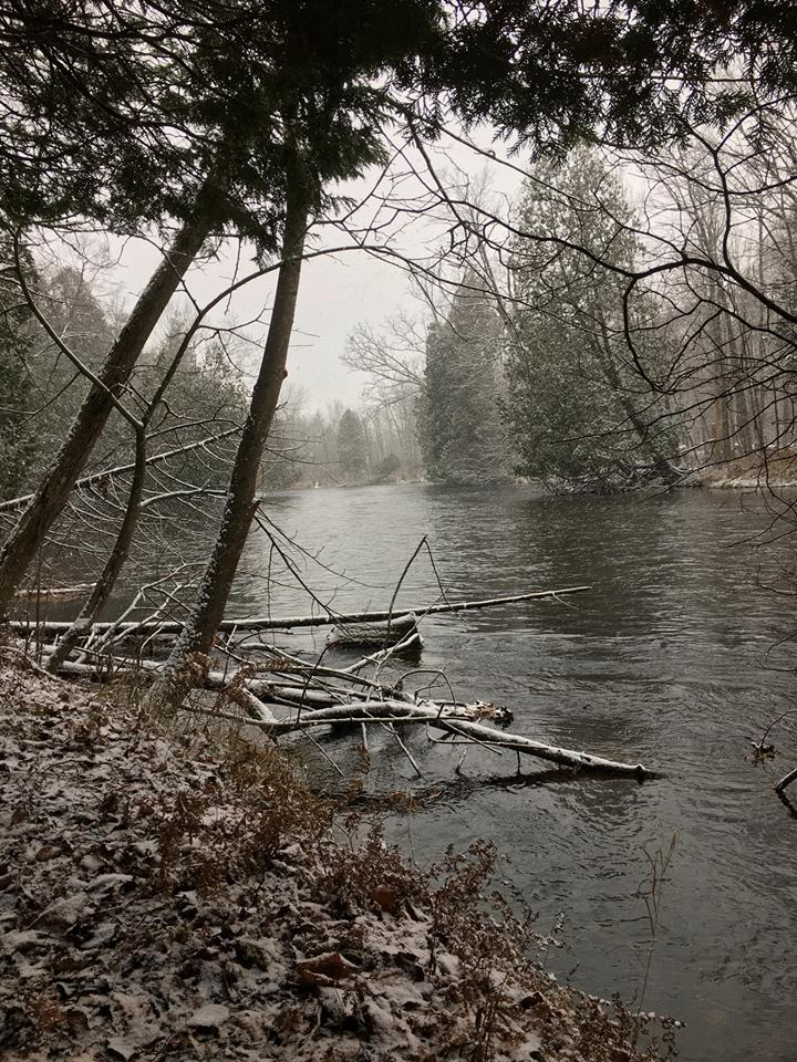 The mighty Chippewa as seen from Chippewa Watershed Conservancy's Audubon Woods Preserve.