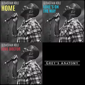 Sebastian Kole: Breaks The Record For Most Songs Chosen from One Artist on Grey's Anatomy