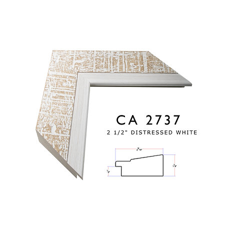 CA2737
