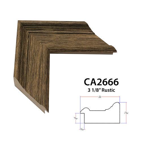 CA2666