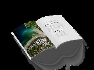 Perfect_Binding_Brochure_Mockup_1_edited