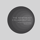 NE Collaborating 40 days (2).png